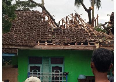 Dua Rumah Warga Desa Tanjungsari Tertimpa Pohon